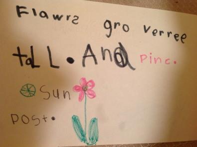 Flawrs_gro_verree_tall_And_pinc_Sun_Post.JPG